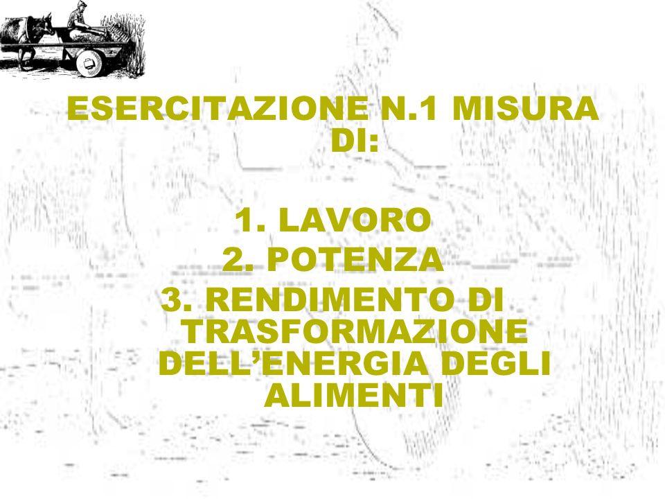 ESERCITAZIONE N.1 MISURA DI: 1.LAVORO 2.POTENZA 3.RENDIMENTO DI TRASFORMAZIONE DELLENERGIA DEGLI ALIMENTI