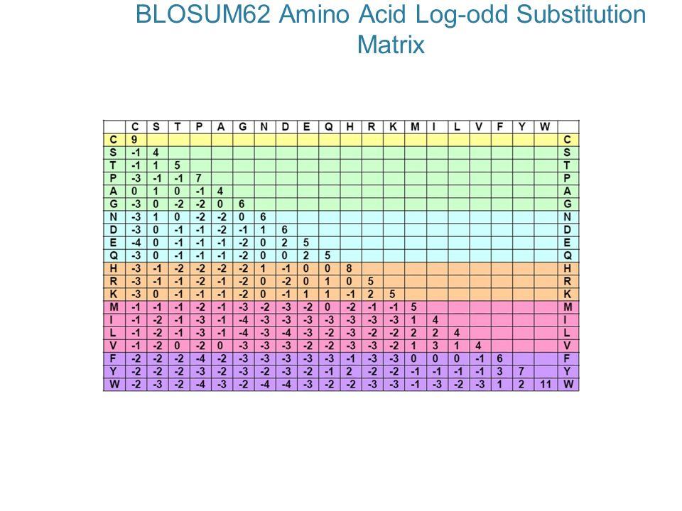 BLOSUM62 Amino Acid Log-odd Substitution Matrix