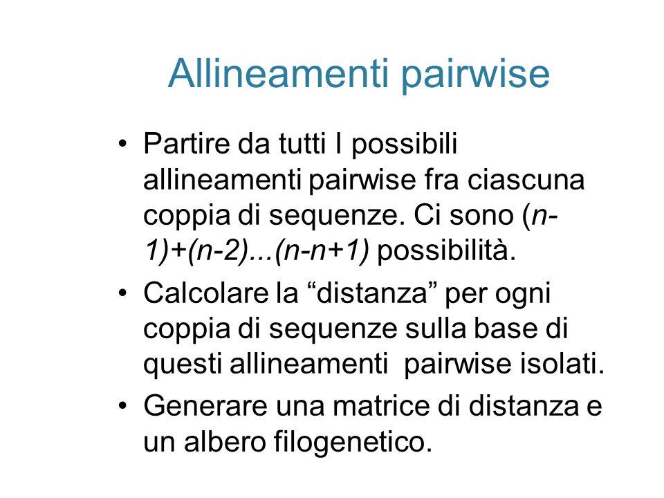 Allineamenti pairwise Partire da tutti I possibili allineamenti pairwise fra ciascuna coppia di sequenze. Ci sono (n- 1)+(n-2)...(n-n+1) possibilità.