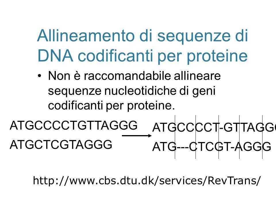 Allineamento di sequenze di DNA codificanti per proteine Non è raccomandabile allineare sequenze nucleotidiche di geni codificanti per proteine. ATGCC