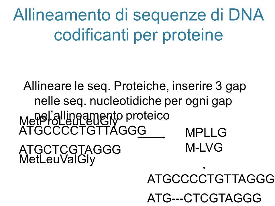 Allineamento di sequenze di DNA codificanti per proteine Allineare le seq. Proteiche, inserire 3 gap nelle seq. nucleotidiche per ogni gap nelallineam