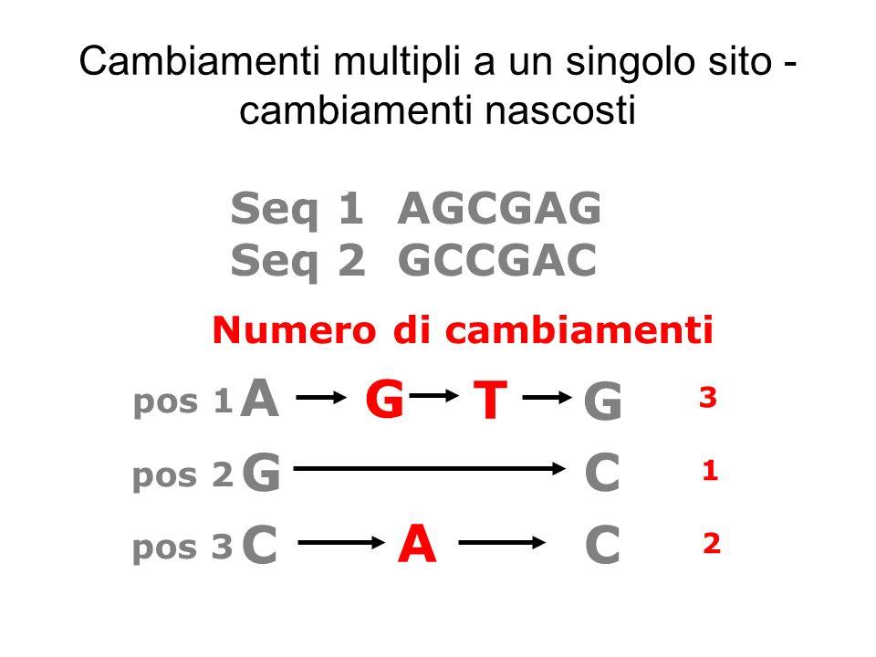 Cambiamenti multipli a un singolo sito - cambiamenti nascosti GC A G T G 2 3 1 pos 1 pos 2 Numero di cambiamenti Seq 1 AGCGAG Seq 2 GCCGAC pos 3 C A C