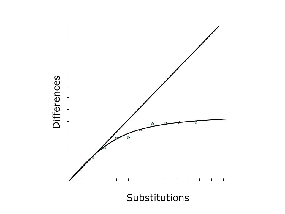 Substitutions Differences