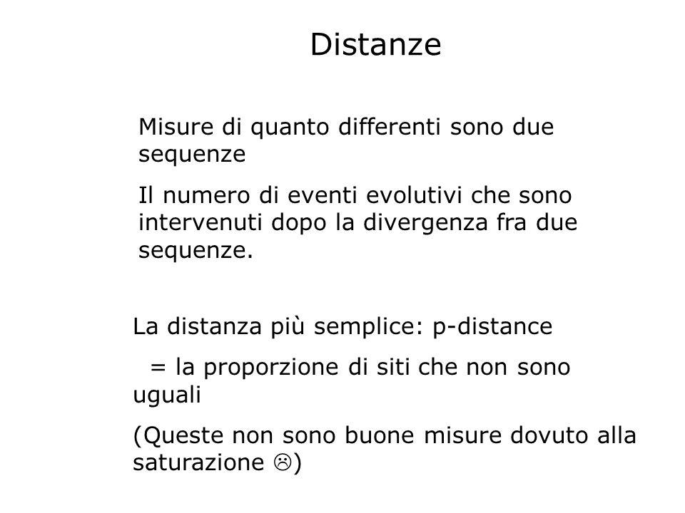 Misure di quanto differenti sono due sequenze Il numero di eventi evolutivi che sono intervenuti dopo la divergenza fra due sequenze. La distanza più
