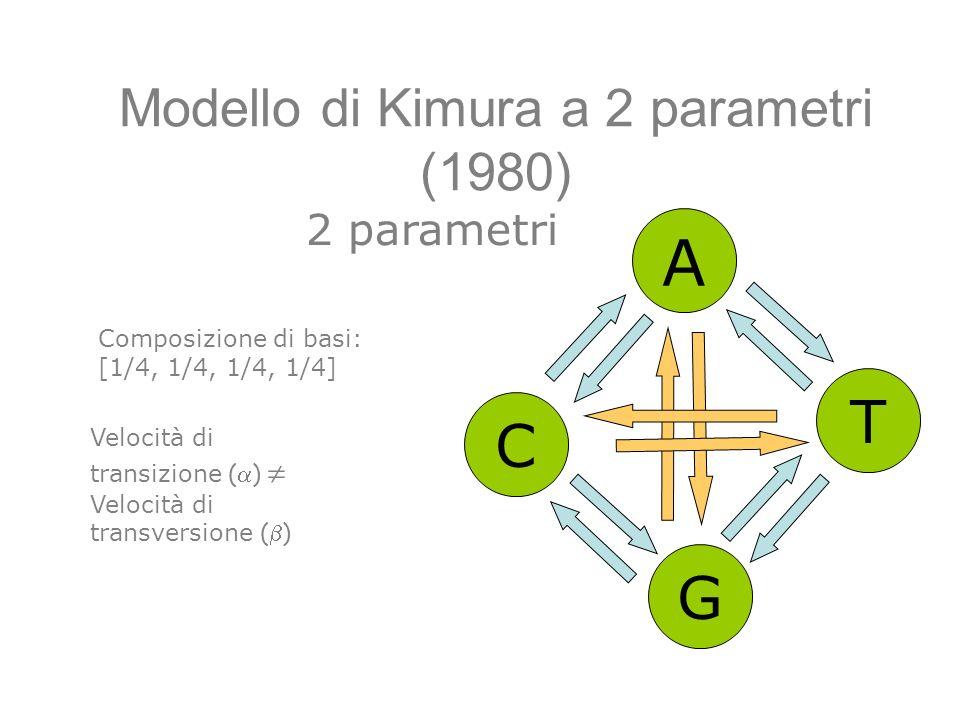 Modello di Kimura a 2 parametri (1980) A C G T Composizione di basi: [1/4, 1/4, 1/4, 1/4] Velocità di transizione ( ) Velocità di transversione ( ) 2