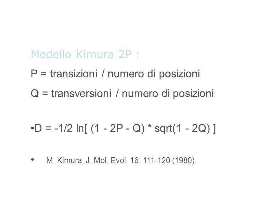 Modello Kimura 2P : P = transizioni / numero di posizioni Q = transversioni / numero di posizioni D = -1/2 ln[ (1 - 2P - Q) * sqrt(1 - 2Q) ] M. Kimura