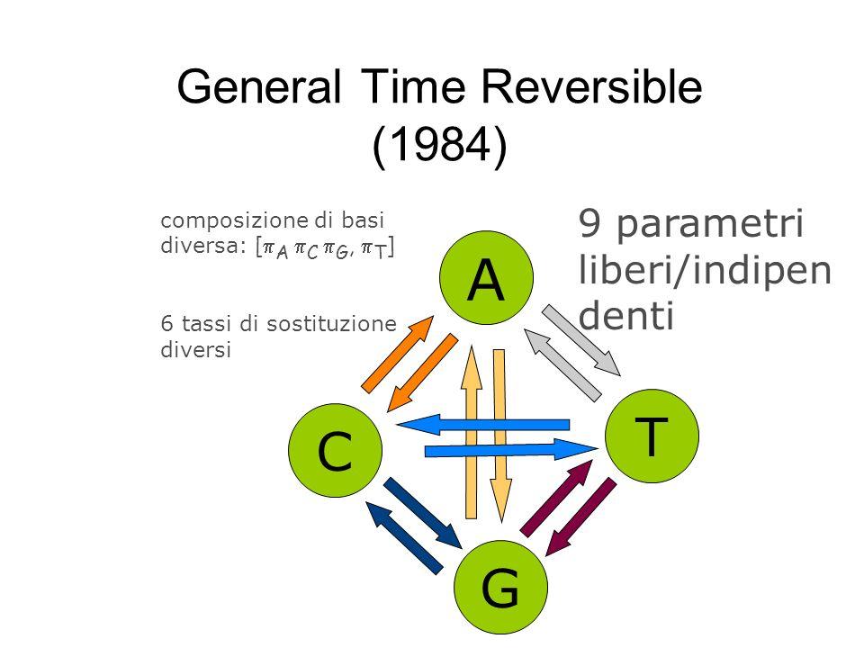 General Time Reversible (1984) A C G T composizione di basi diversa: [ A C G, T ] 9 parametri liberi/indipen denti 6 tassi di sostituzione diversi