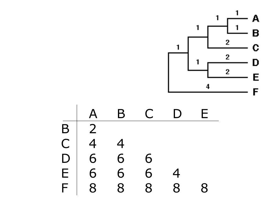 AB CDE B2 C44 D666 E6664 F88888