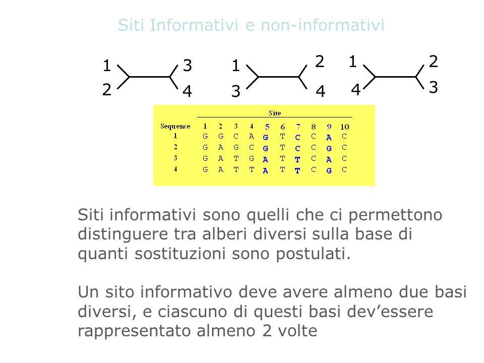 Siti Informativi e non-informativi 1 2 3 4 1 3 2 4 1 4 2 3 Siti informativi sono quelli che ci permettono distinguere tra alberi diversi sulla base di