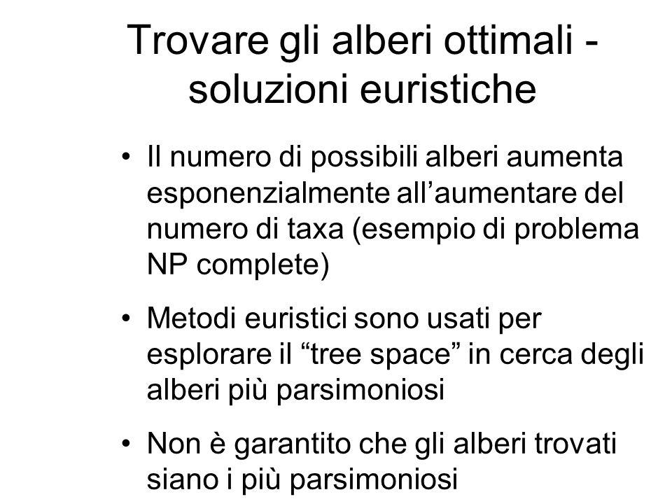 Trovare gli alberi ottimali - soluzioni euristiche Il numero di possibili alberi aumenta esponenzialmente allaumentare del numero di taxa (esempio di