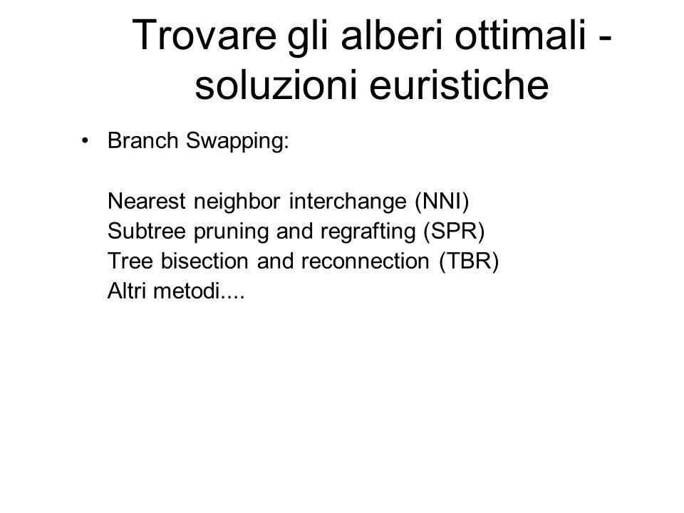 Trovare gli alberi ottimali - soluzioni euristiche Branch Swapping: Nearest neighbor interchange (NNI) Subtree pruning and regrafting (SPR) Tree bisec