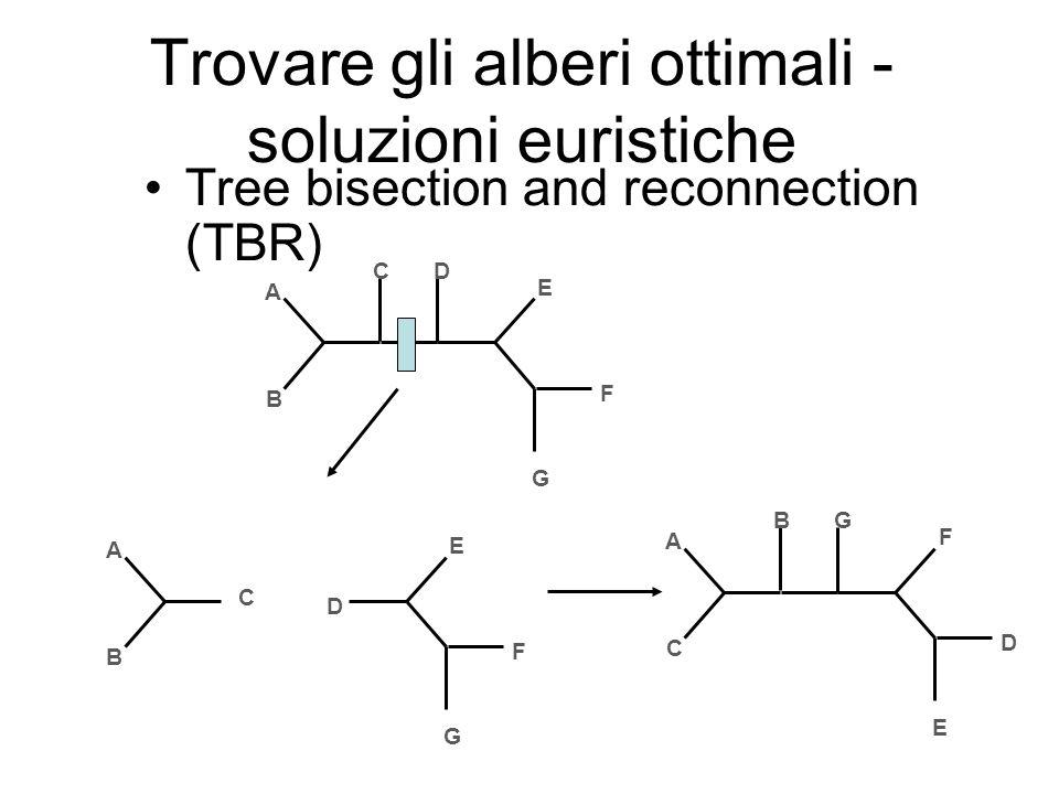 Trovare gli alberi ottimali - soluzioni euristiche Tree bisection and reconnection (TBR) A B CD E F G A B C D E F G A C BG F D E