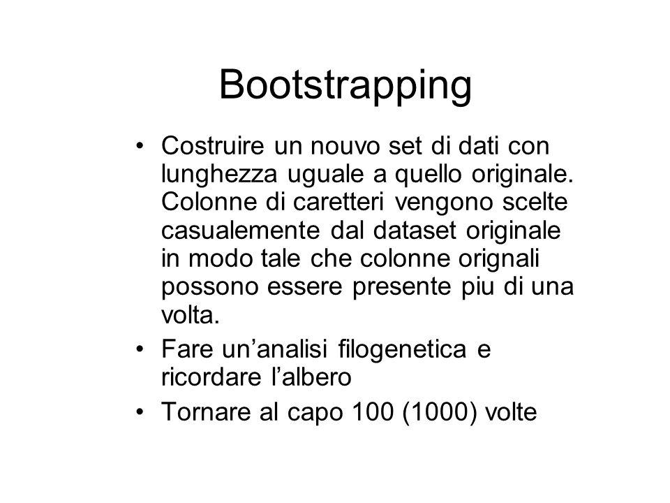 Bootstrapping Costruire un nouvo set di dati con lunghezza uguale a quello originale. Colonne di caretteri vengono scelte casualemente dal dataset ori