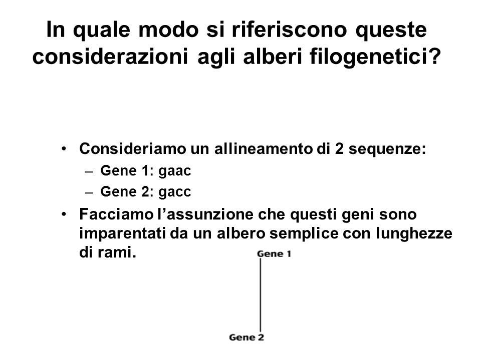 In quale modo si riferiscono queste considerazioni agli alberi filogenetici? Consideriamo un allineamento di 2 sequenze: –Gene 1: gaac –Gene 2: gacc F