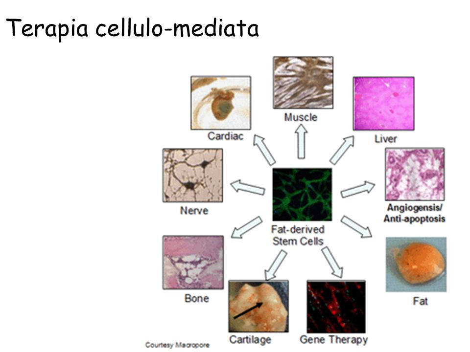 Terapia cellulo-mediata