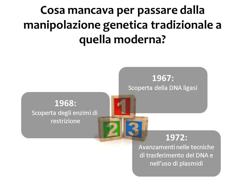 Animale Transgenico: animale nel cui genoma è stato inserito uno o più frammenti di DNA esogeno Transgene: frammento di DNA esogeno integrato stabilmente nel patrimonio genetico di cellule animali o vegetali