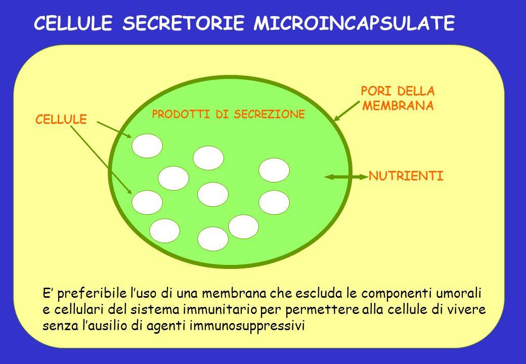 E preferibile luso di una membrana che escluda le componenti umorali e cellulari del sistema immunitario per permettere alla cellule di vivere senza l