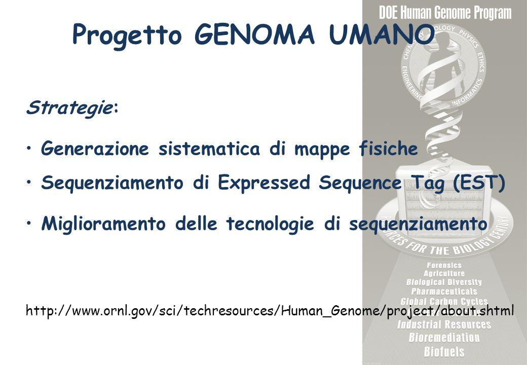 Progetto GENOMA UMANO Strategie: Generazione sistematica di mappe fisiche Sequenziamento di Expressed Sequence Tag (EST) Miglioramento delle tecnologi