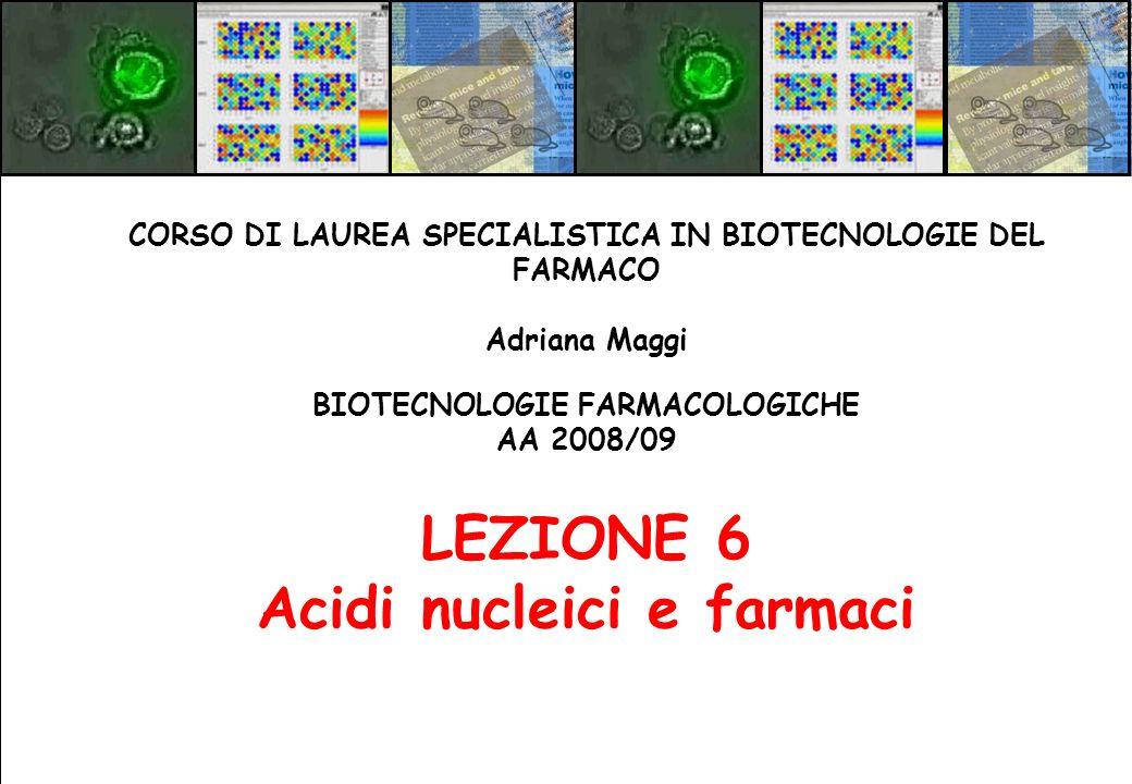 BIOTECNOLOGIE FARMACOLOGICHE AA 2008/09 LEZIONE 6 Acidi nucleici e farmaci CORSO DI LAUREA SPECIALISTICA IN BIOTECNOLOGIE DEL FARMACO Adriana Maggi