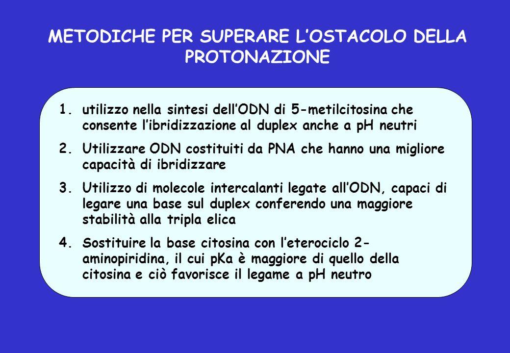 METODICHE PER SUPERARE LOSTACOLO DELLA PROTONAZIONE 1.utilizzo nella sintesi dellODN di 5-metilcitosina che consente libridizzazione al duplex anche a