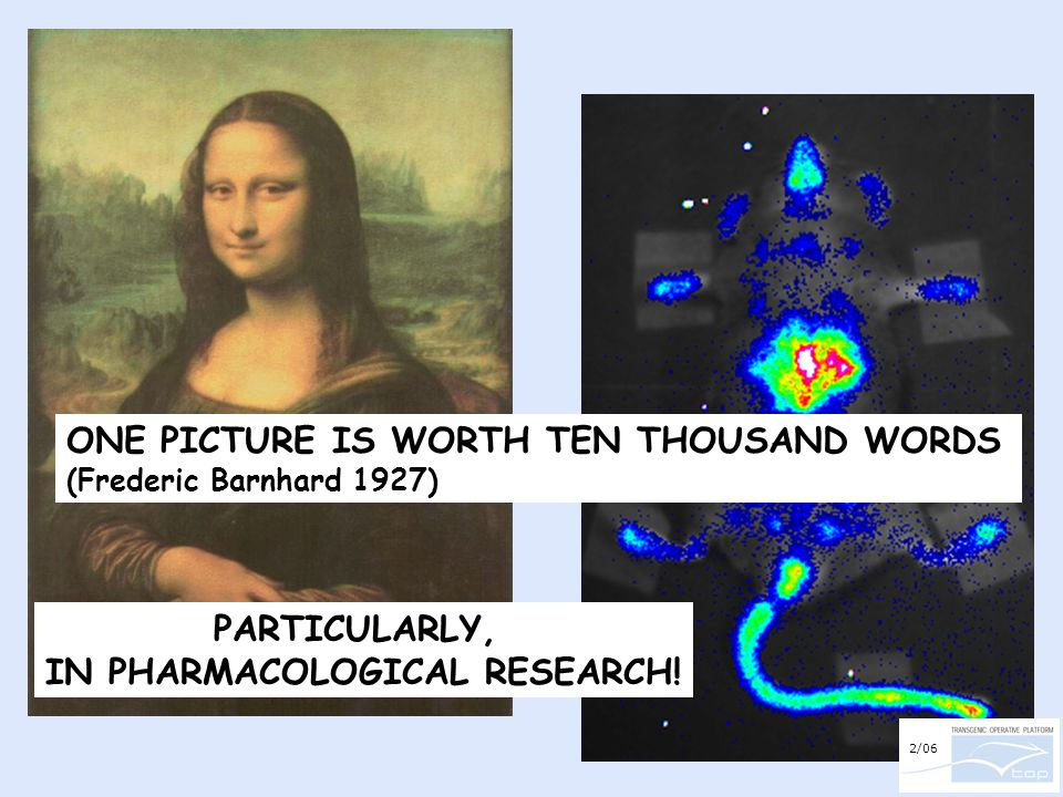 PARTICULARLY, IN PHARMACOLOGICAL RESEARCH! ONE PICTURE IS WORTH TEN THOUSAND WORDS (Frederic Barnhard 1927) 2/06