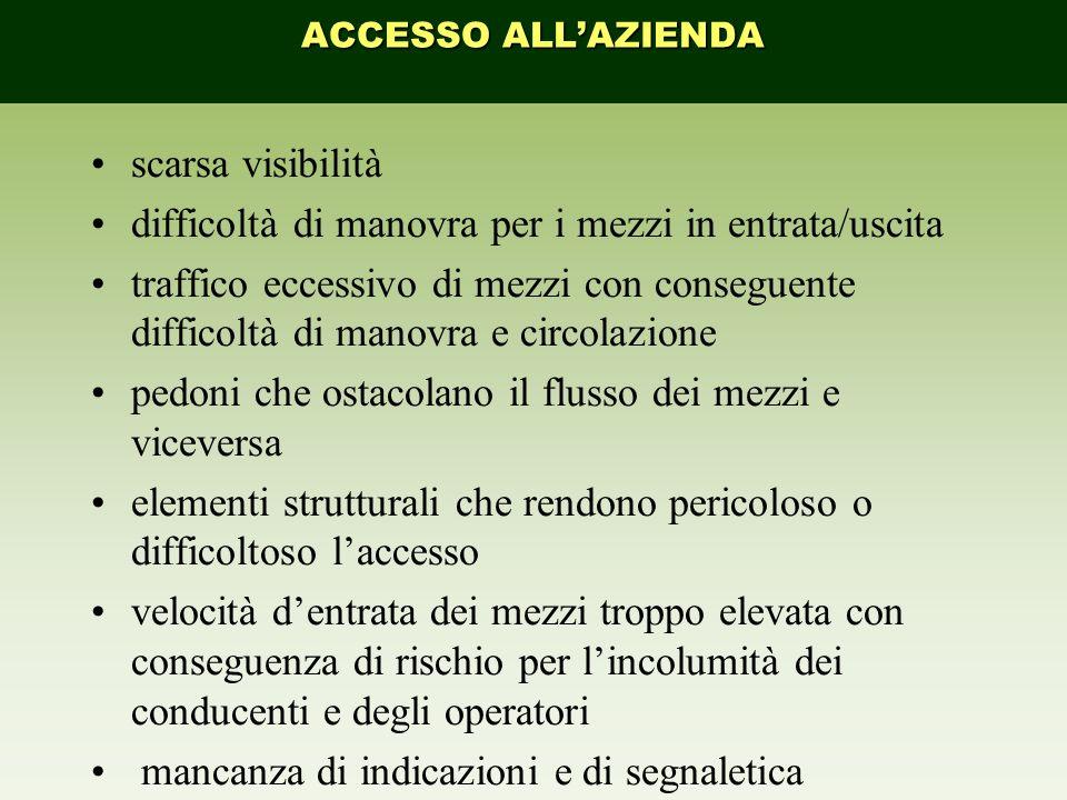 scarsa visibilità difficoltà di manovra per i mezzi in entrata/uscita traffico eccessivo di mezzi con conseguente difficoltà di manovra e circolazione