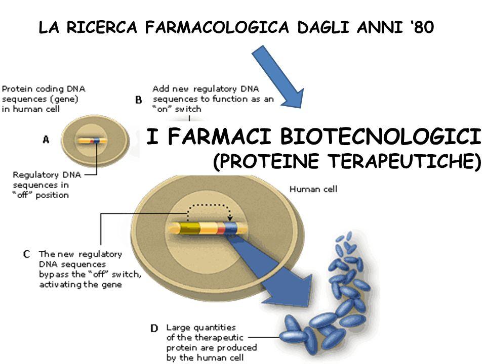 Typical Protein Production Process La scelta della sequenza genica INIZIO La scelta del vettore La scelta dellorganismo per la produzione La scelta delle condizioni di fermentazione La scelta del downstream processing Produzione di proteine terapeutiche Processi diversi danno luogo a prodotti non identici tra loro FINE Il prodotto finale è il risultato di numerose scelte
