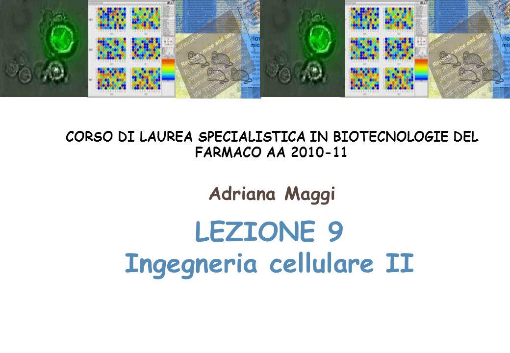 LEZIONE 9 Ingegneria cellulare II CORSO DI LAUREA SPECIALISTICA IN BIOTECNOLOGIE DEL FARMACO AA 2010-11 Adriana Maggi