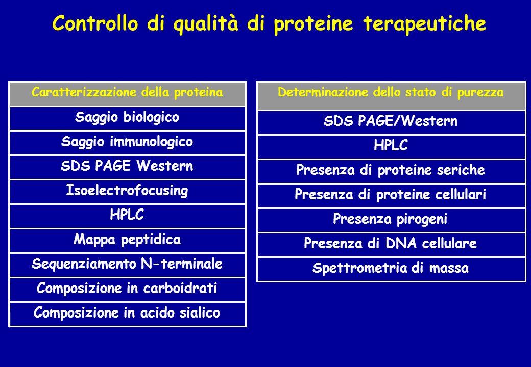 Controllo di qualità di proteine terapeutiche Spettrometria di massa Presenza di DNA cellulare Presenza pirogeni Presenza di proteine cellulari Presen