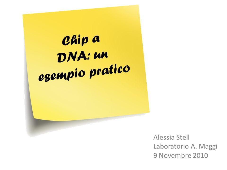 Chip a DNA: un esempio pratico Alessia Stell Laboratorio A. Maggi 9 Novembre 2010