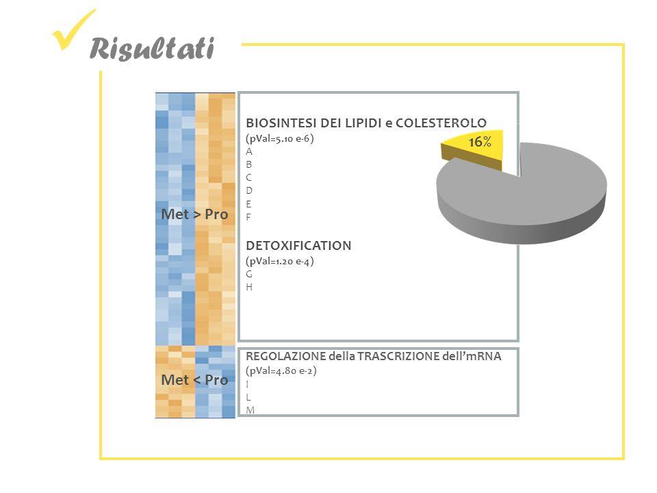 Risultati Met > Pro Met < Pro REGOLAZIONE della TRASCRIZIONE dellmRNA (pVal=4.80 e-2) I L M BIOSINTESI DEI LIPIDI e COLESTEROLO (pVal=5.10 e-6) A B C D E F DETOXIFICATION (pVal=1.20 e-4) G H 16%