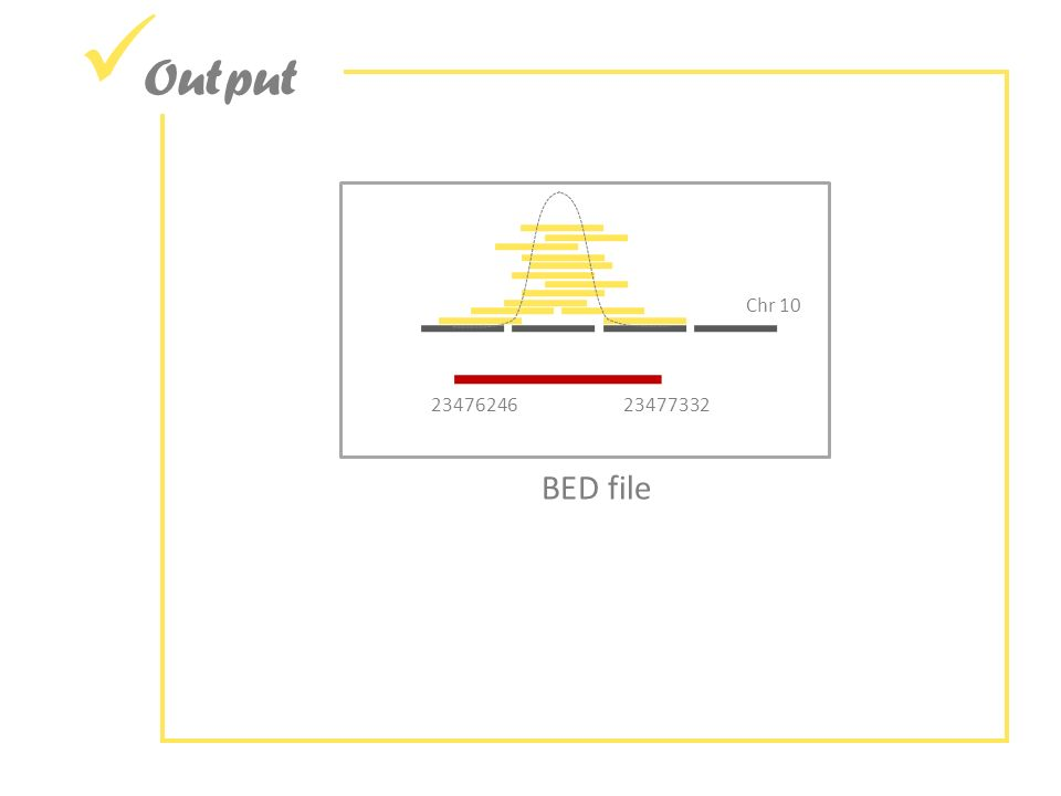 Output Chr 10 2347624623477332 BED file