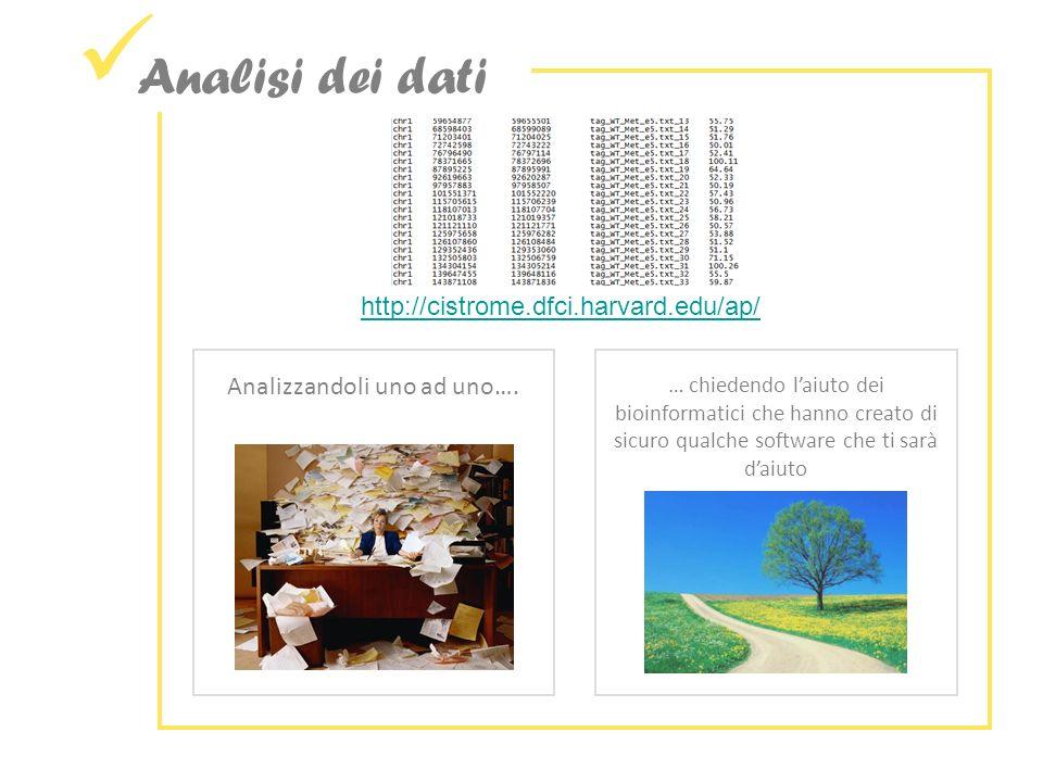 Analisi dei dati http://cistrome.dfci.harvard.edu/ap/ Analizzandoli uno ad uno….