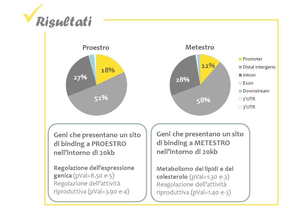 Risultati 18% 51% 27% 12% 58% 28% Proestro Metestro Geni che presentano un sito di binding a METESTRO nellintorno di 20kb Metabolismo dei lipidi e del colesterolo (pVal=1.30 e-3) Reagolazione dellattività riproduttiva (pVal=1.40 e-3) Geni che presentano un sito di binding a PROESTRO nellintorno di 20kb Regolazione dellespressione genica (pVal=8.50 e-5) Regolazione dellattività riproduttiva (pVal=3.90 e-4)