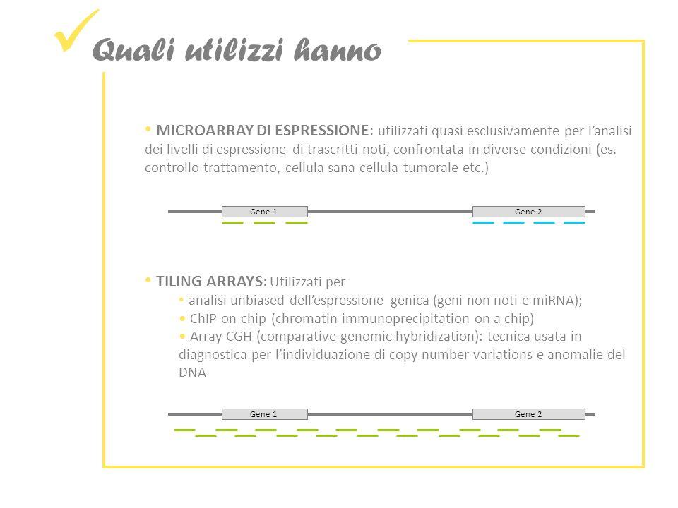 Quali utilizzi hanno MICROARRAY DI ESPRESSIONE: utilizzati quasi esclusivamente per lanalisi dei livelli di espressione di trascritti noti, confrontata in diverse condizioni (es.