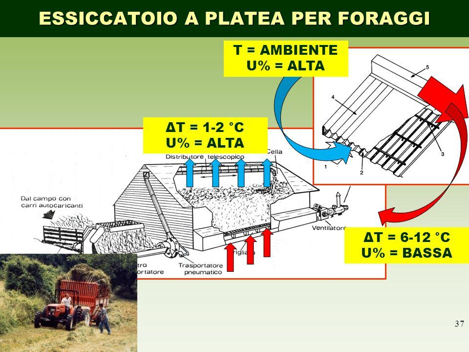 37 ESSICCATOIO A PLATEA PER FORAGGI T = AMBIENTE U% = ALTA ΔT = 6-12 °C U% = BASSA ΔT = 1-2 °C U% = ALTA