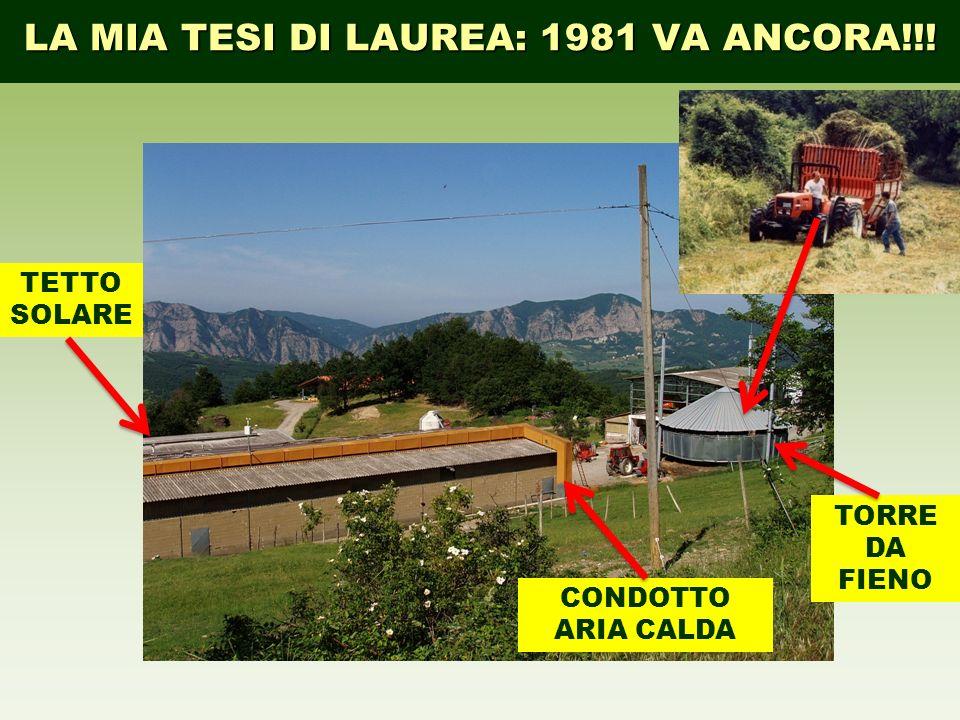 LA MIA TESI DI LAUREA: 1981 VA ANCORA!!! TETTO SOLARE CONDOTTO ARIA CALDA TORRE DA FIENO
