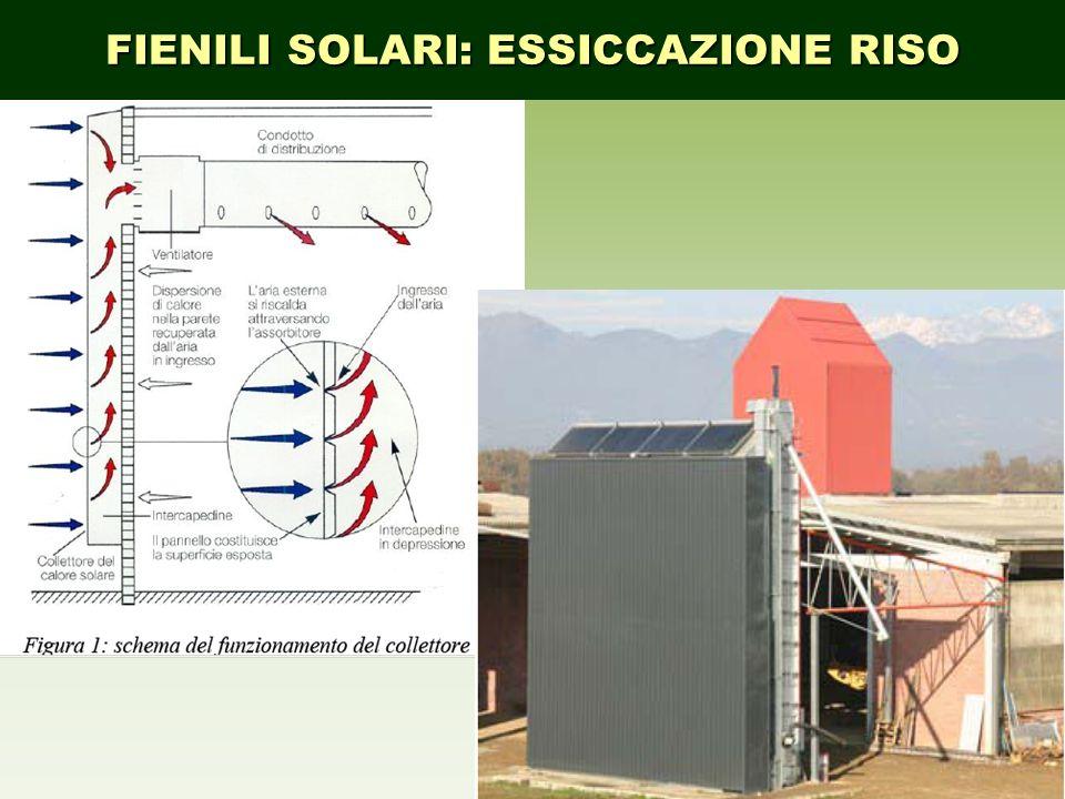 FIENILI SOLARI: ESSICCAZIONE RISO