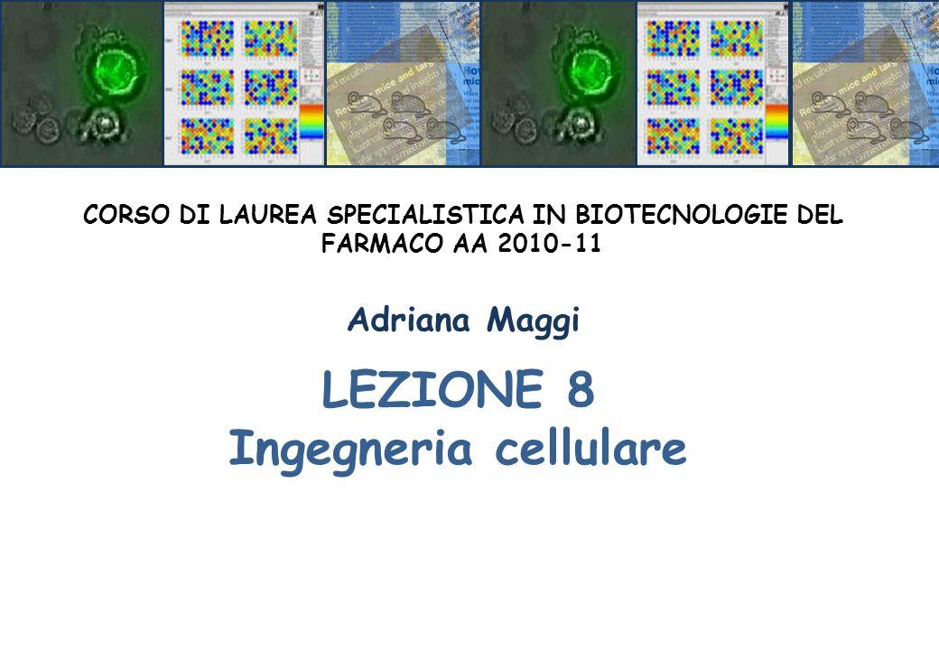 LEZIONE 8 Ingegneria cellulare CORSO DI LAUREA SPECIALISTICA IN BIOTECNOLOGIE DEL FARMACO AA 2010-11 Adriana Maggi