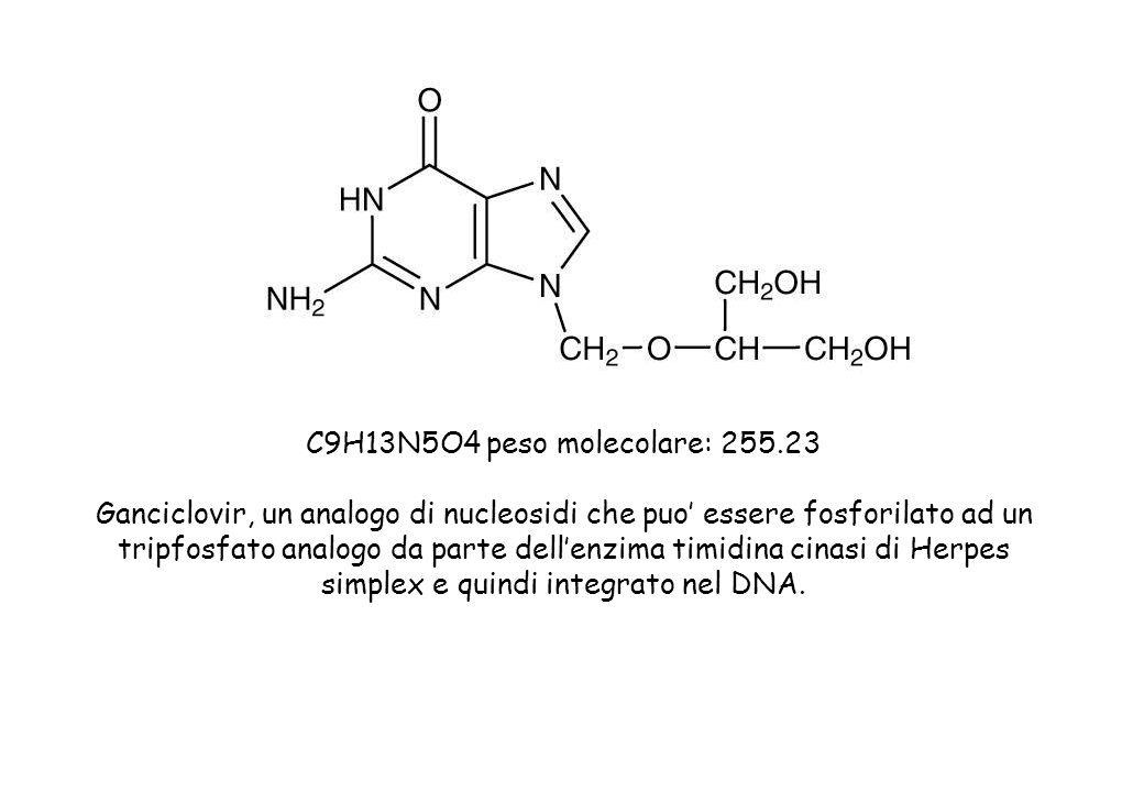 C9H13N5O4 peso molecolare: 255.23 Ganciclovir, un analogo di nucleosidi che puo essere fosforilato ad un tripfosfato analogo da parte dellenzima timidina cinasi di Herpes simplex e quindi integrato nel DNA.