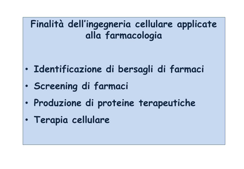 Finalità dellingegneria cellulare applicate alla farmacologia Identificazione di bersagli di farmaci Screening di farmaci Produzione di proteine terapeutiche Terapia cellulare