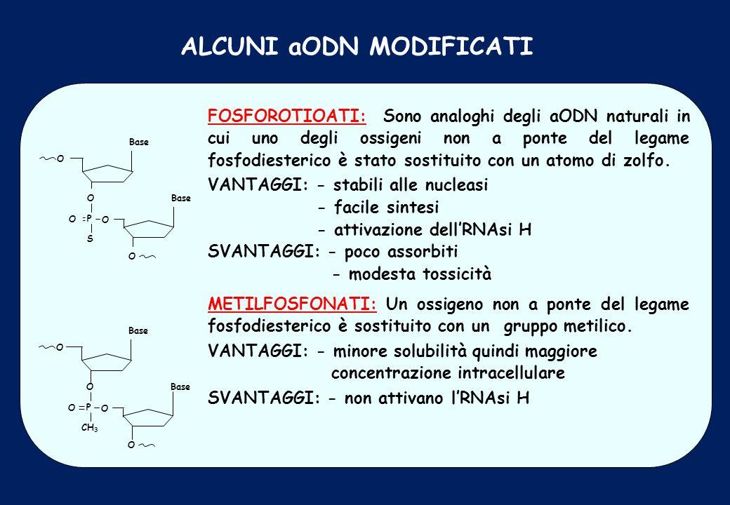 ALCUNI aODN MODIFICATI FOSFOROTIOATI: Sono analoghi degli aODN naturali in cui uno degli ossigeni non a ponte del legame fosfodiesterico è stato sosti