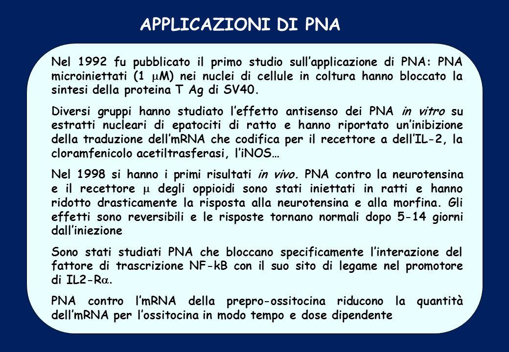 Nel 1992 fu pubblicato il primo studio sullapplicazione di PNA: PNA microiniettati (1 M) nei nuclei di cellule in coltura hanno bloccato la sintesi de