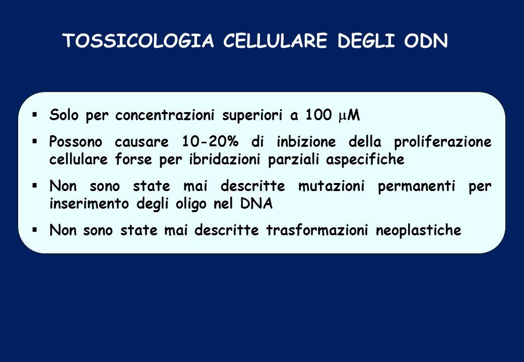 TOSSICOLOGIA CELLULARE DEGLI ODN Solo per concentrazioni superiori a 100 M Possono causare 10-20% di inbizione della proliferazione cellulare forse pe
