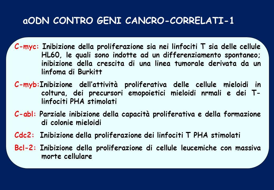 aODN CONTRO GENI CANCRO-CORRELATI-1 C-myc: Inibizione della proliferazione sia nei linfociti T sia delle cellule HL60, le quali sono indotte ad un dif