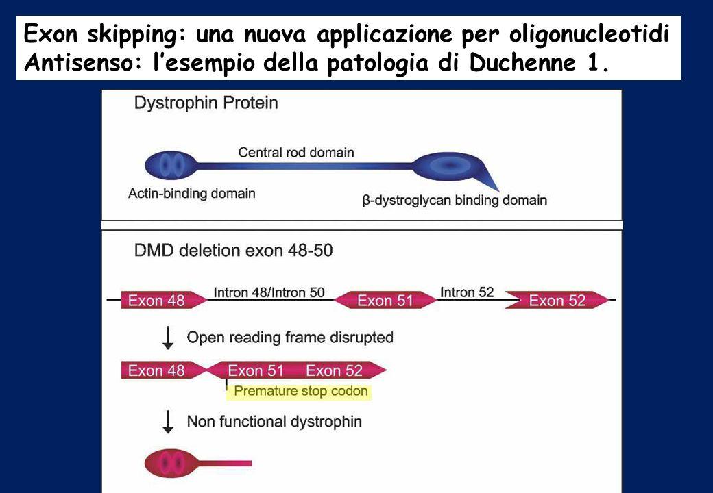 Exon skipping: una nuova applicazione per oligonucleotidi Antisenso: lesempio della patologia di Duchenne 1.