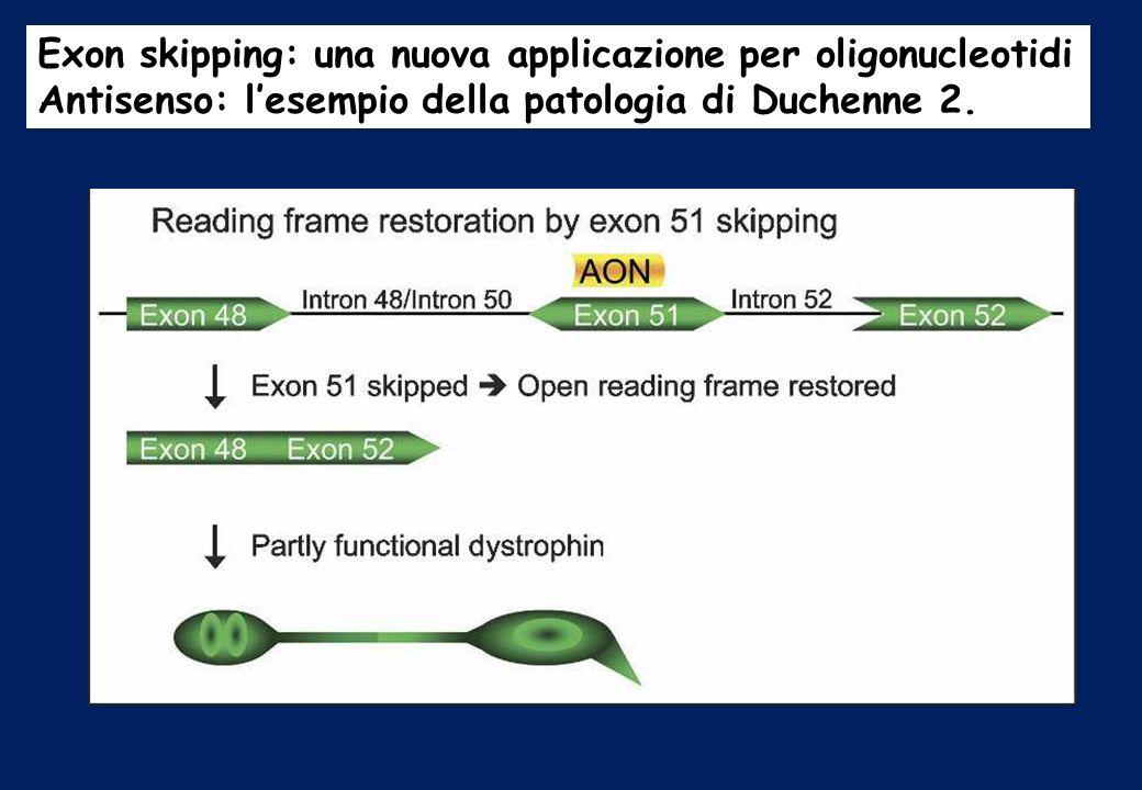 Exon skipping: una nuova applicazione per oligonucleotidi Antisenso: lesempio della patologia di Duchenne 2.