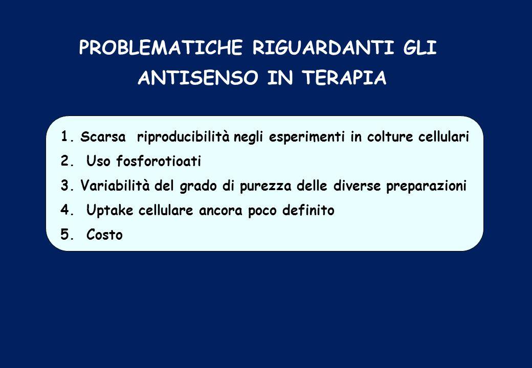 PROBLEMATICHE RIGUARDANTI GLI ANTISENSO IN TERAPIA 1. Scarsa riproducibilità negli esperimenti in colture cellulari 2. Uso fosforotioati 3. Variabilit