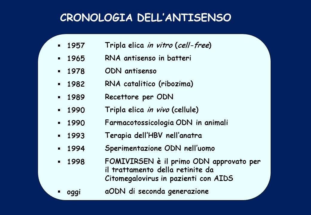 CRONOLOGIA DELLANTISENSO 1957 1965 1978 1982 1989 1990 1993 1994 1998 oggi Tripla elica in vitro (cell-free) RNA antisenso in batteri ODN antisenso RN