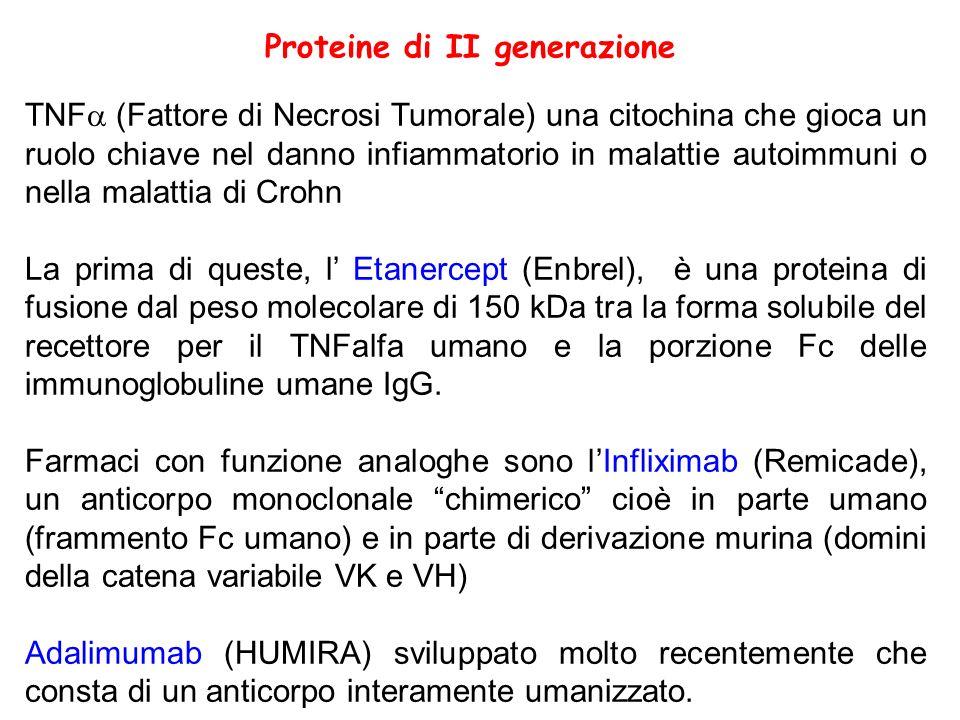Proteine di II generazione TNF (Fattore di Necrosi Tumorale) una citochina che gioca un ruolo chiave nel danno infiammatorio in malattie autoimmuni o